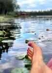 Scout Lake feet