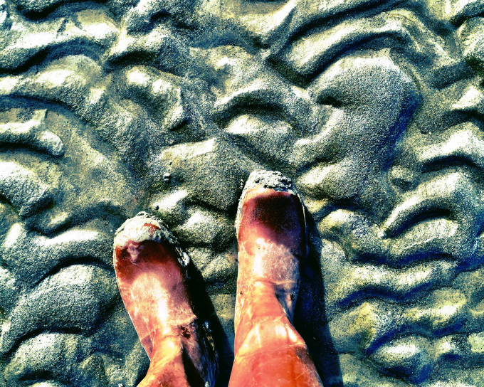 2016-beach-walk-nikiski-xtratuffs-pegge-erkeneff